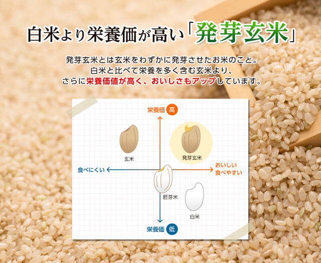 発芽玄米の底力 レビュー